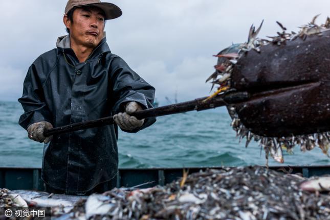 [zaker]何去何从?中韩渔业纠纷阴霾下的中国渔夫们
