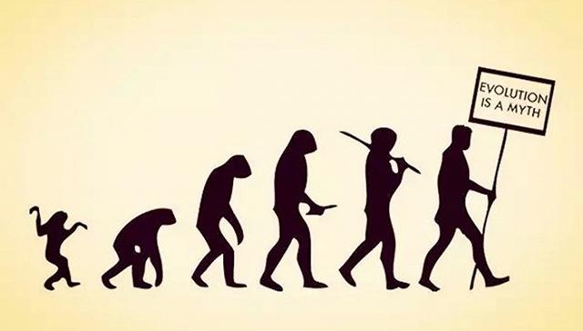 [界面新闻]还抱着愚蠢自大的人类中心主义吗?九本关于动物的书让我们认识自己