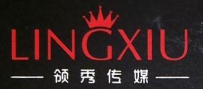 河南领秀文化发展有限公司