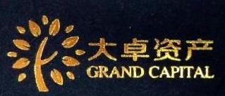 上海大卓资产管理有限公司