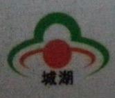 广西城湖商贸有限责任公司